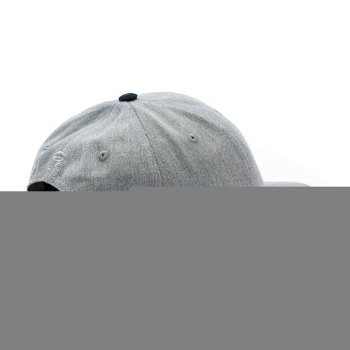 Cayler & Sons C&S CL BK Fastball Curved Cap grey