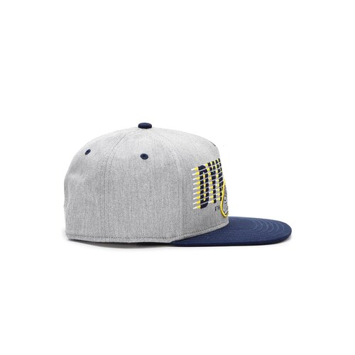 Cayler & Sons C&S WL Dynasty ATHL Cap  grey heather