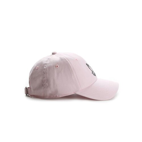 Cayler & Sons C&S WL Chosen One Curved Cap pale pink