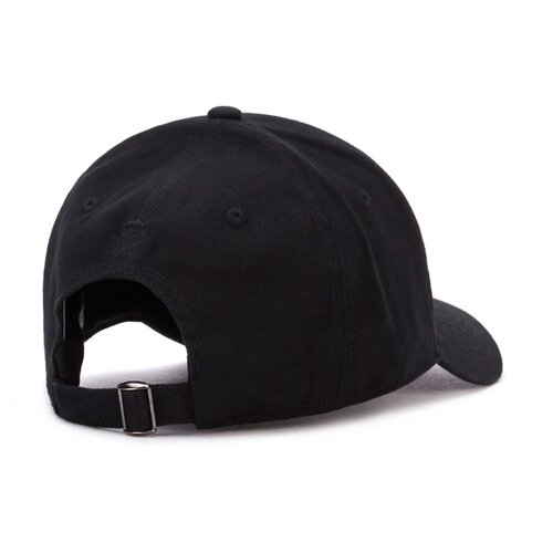 Cayler & Sons C&S WL Trust Curved Cap black/mc