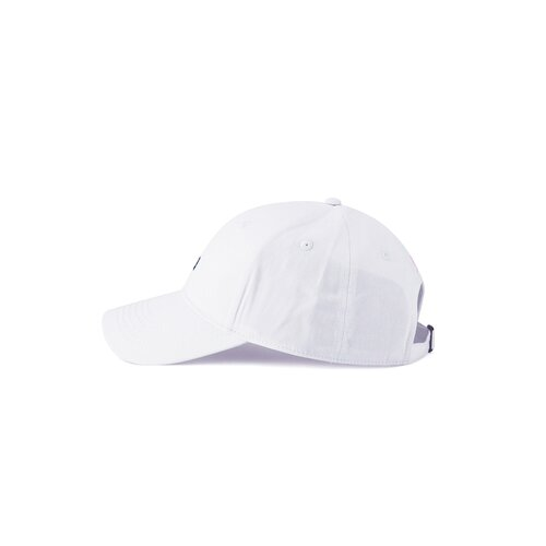 Cayler & Sons C&S WL Camingo Curved Cap white/mc one