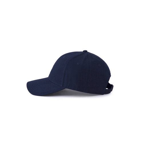 Cayler & Sons C&S WL Good Day Curved Cap navy/mc one