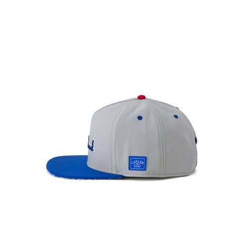 Cayler & Sons C&S WL Westcoast Cap grey/royal one