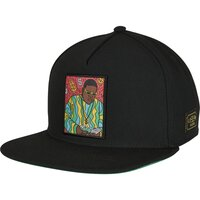 Cayler & Sons C&S WL Big Lines Snapback black/mc one size